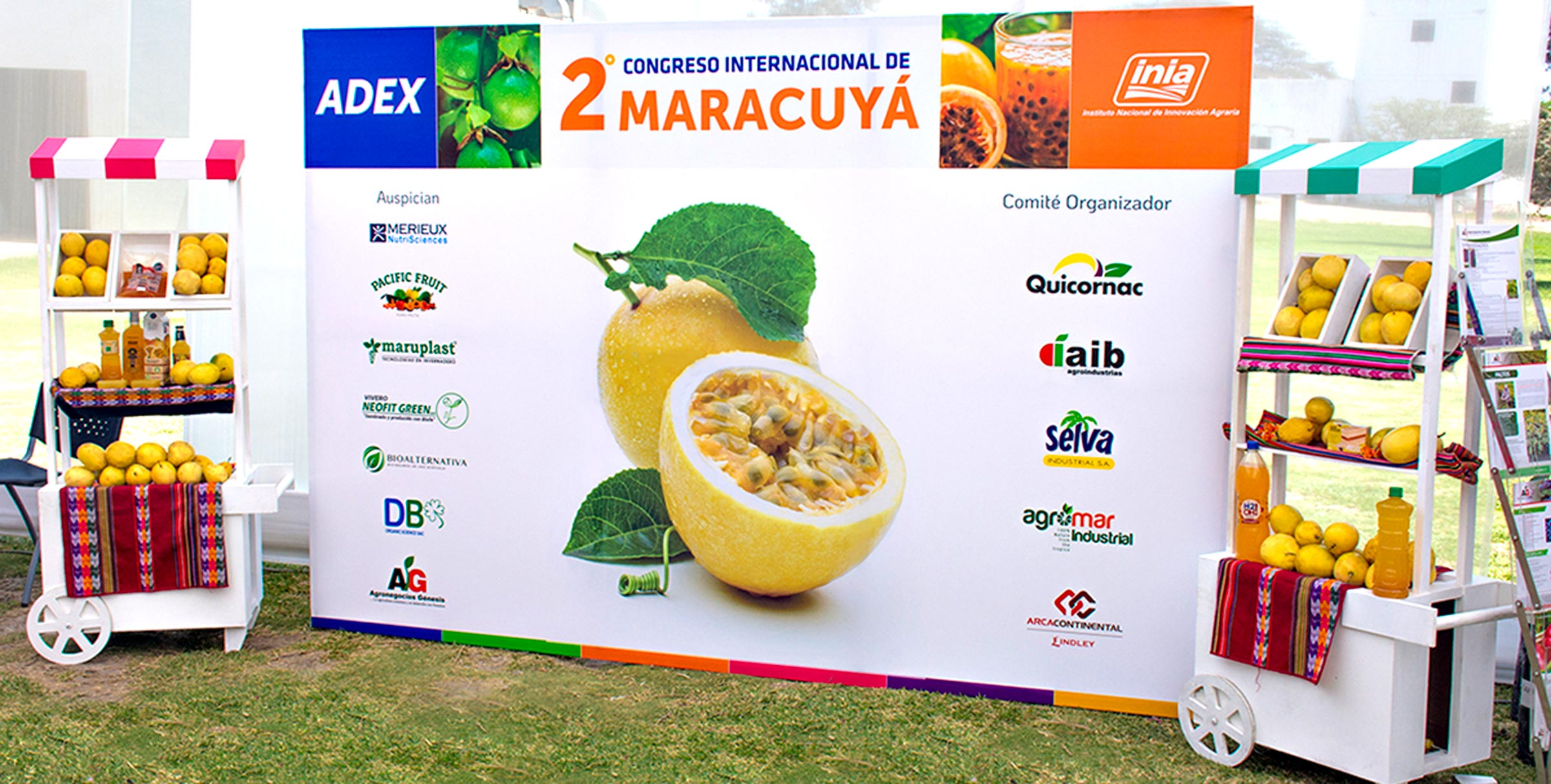II Peruvian Passion Fruit 2019